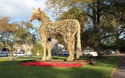 Canterbury College students build War Horse memorial with help from Jacksons Fencing